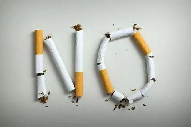 为什么有人一辈子吸烟,不得肺癌还很长寿?