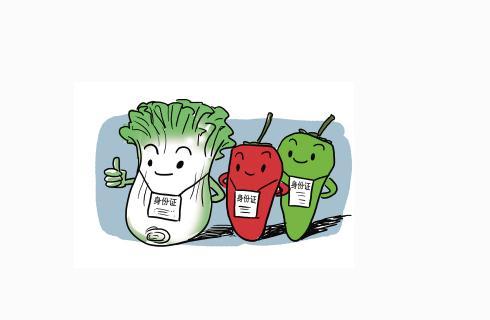 健康公开课:《如何避开食品安全雷区》